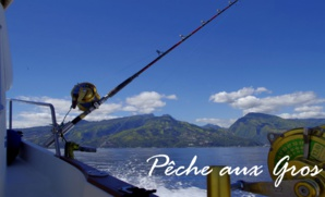 Tahiti Trip Fishing